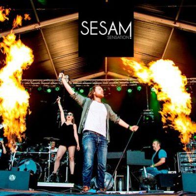 Sesam Sensation Band-boeken